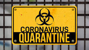 Quarantine Survival Guide