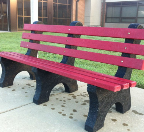 "Our goal... a ""Buddy Bench"""