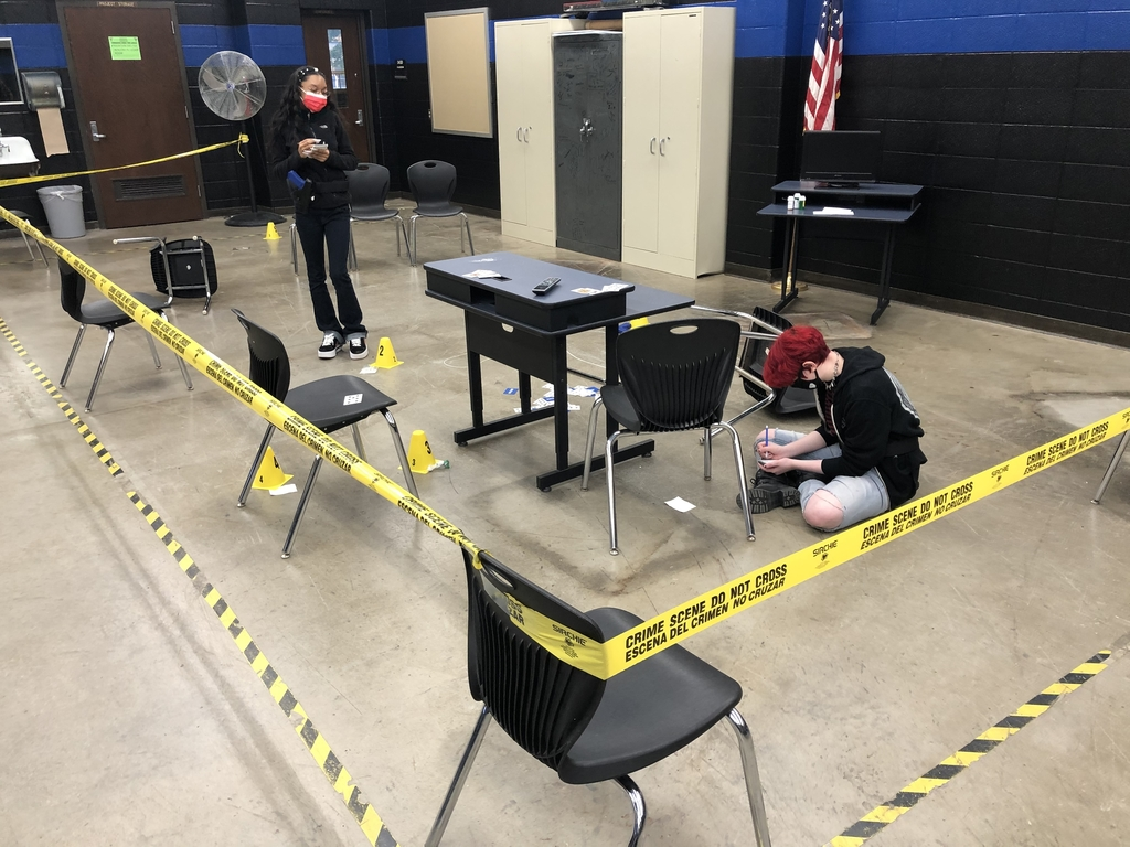 Students investigate a crime scene in our Criminal Justice class.