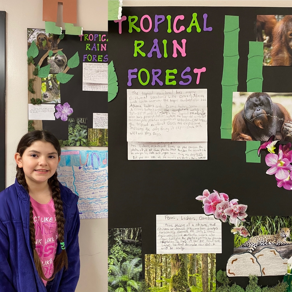 Ms. Popplewell's students are studying biomes. Beautiful work!